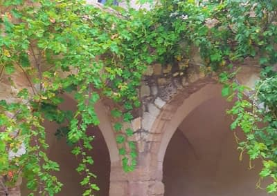 enTractTour route des vins Ste Roseline