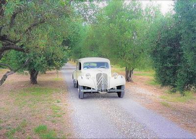 enTractTour route des vins oenologie